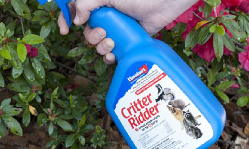 Keep Animals Away with Havahart Critter Ridder Animal Repellent for 23% Off!