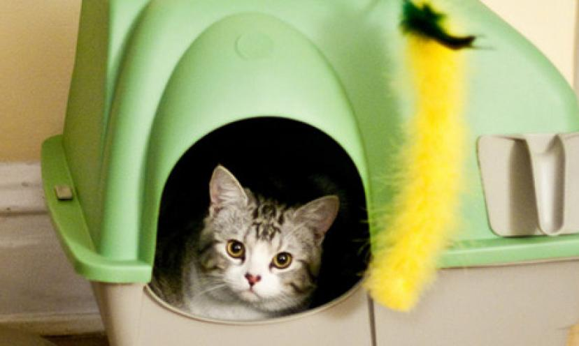 Save 38% On the PetSafe Simply Clean Continuous-Clean Litter Box!
