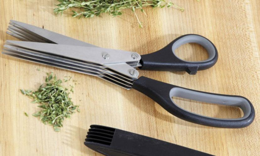 Save 43% On A Pair Of Wusthof Multi-Blade Herb Shears!
