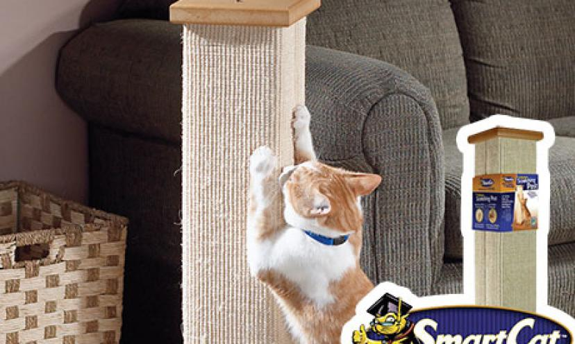 Enjoy 56% Off the SmartCat Ultimate Scratching Post!