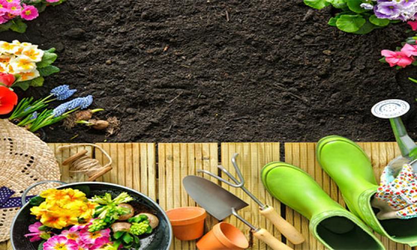 Kick Off Your Gardening Season!