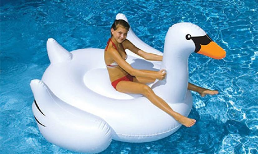 Save 50% on an International Leisure Giant Swan!