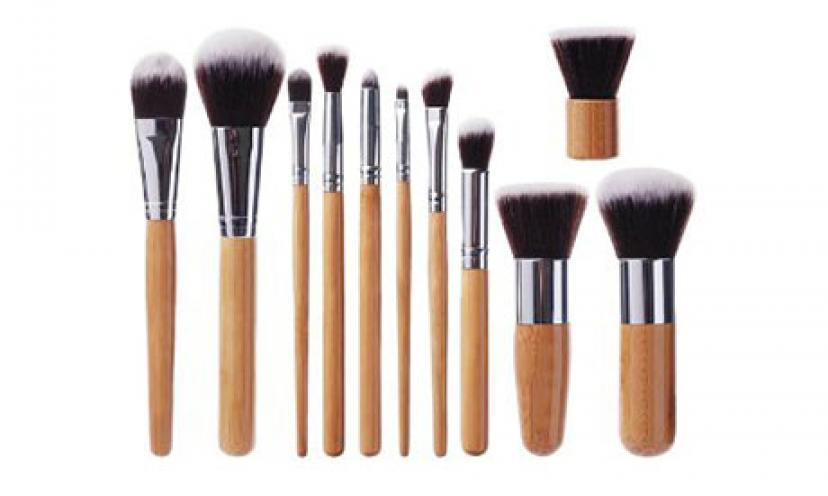 Save 70% on EmaxDesign 11-Piece Brush Set!