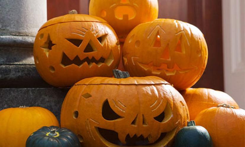 Get a FREE Fiora Spooktacular Pumpkin Carving Kit!