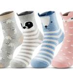 Get FREE Animal Socks!