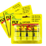 Get a FREE Fly Catcher!