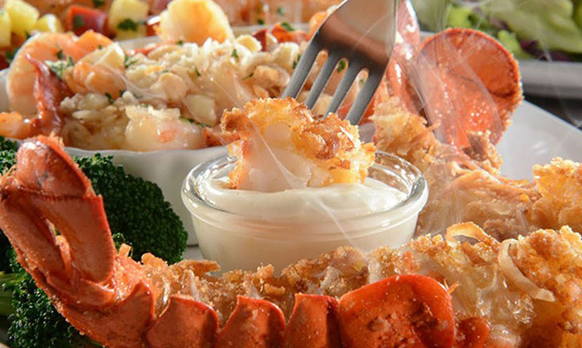 Enter to Win Red Lobster For a Year!