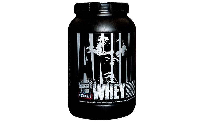 Get a FREE Universal Nutrition Animal Whey Protein Sample!