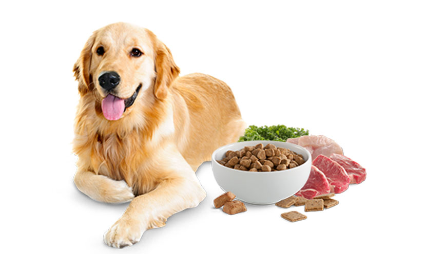 Win FREE Pet Food!